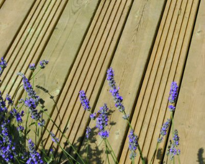 Timber decking photo of the Hampton Court Flower Show 06